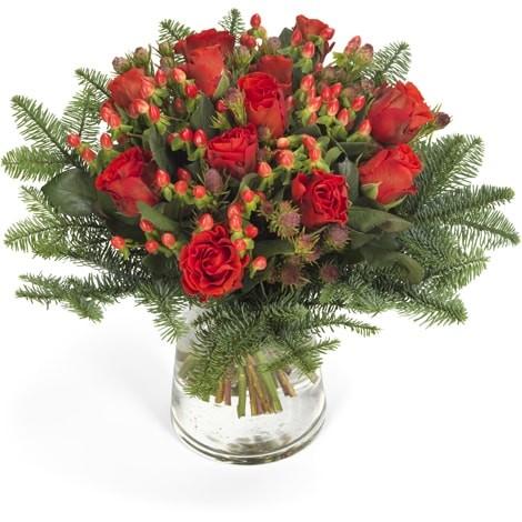 Frohes Fest - Blumen zu Weihnachten
