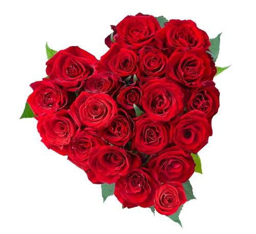 Rosenherz Ich liebe dich